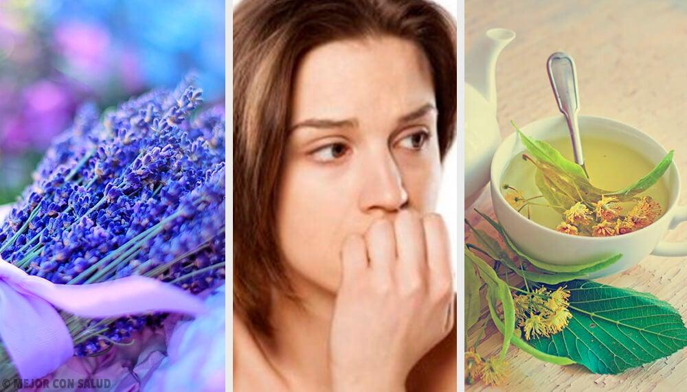 Los 6 mejores ansiolíticos naturales para calmar la ansiedad