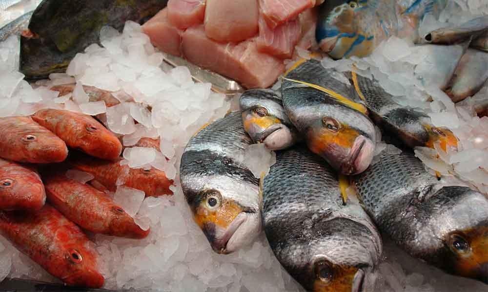 Como escoger el pescado