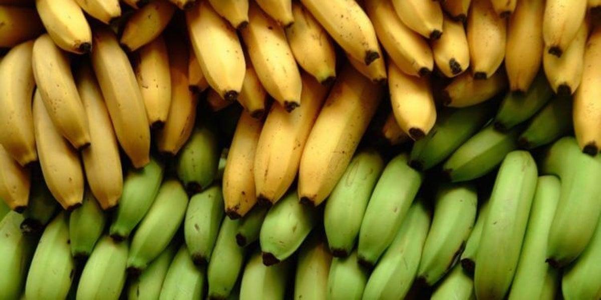 valor nutricional del platano verde