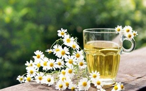 Infusión y flores de manzanilla