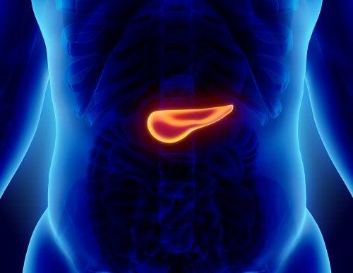 Cuáles son las causas de la pancreatitis
