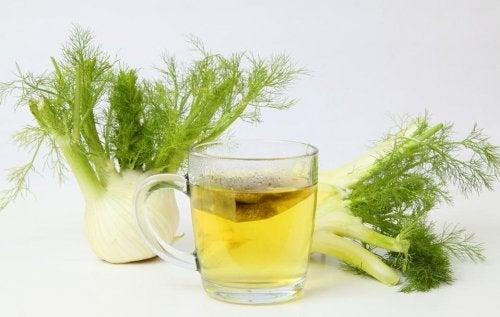 Hinojo para el alivio de los gases estomacales