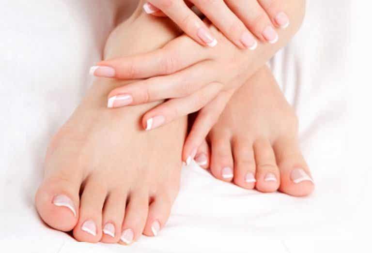 Tratamiento de aceite de oliva para fortalecer las uñas
