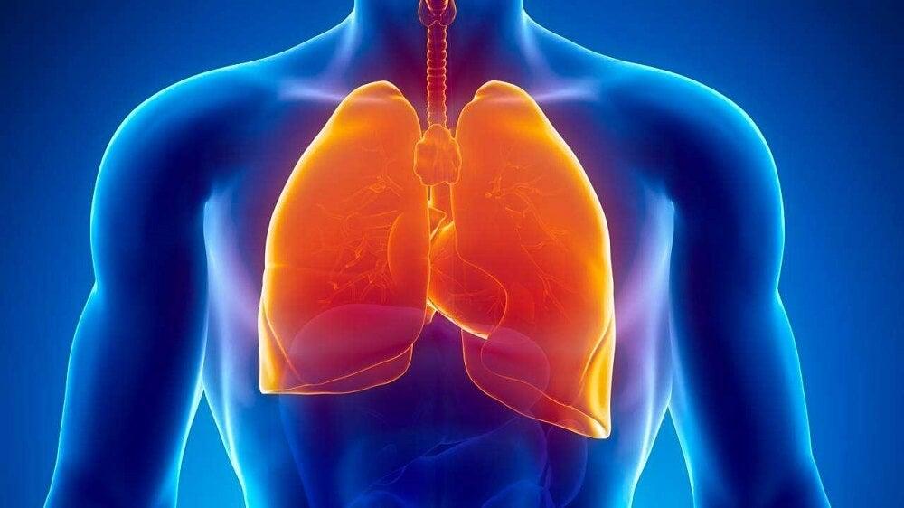 La tuberculosis puede causarsudoración nocturna