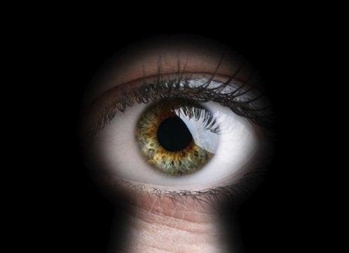 El voyeurismo es uno de fetiches sexuales más comunes