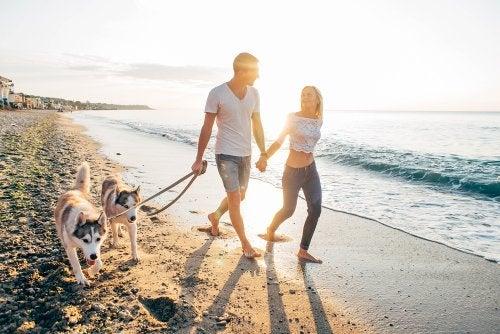 3 hábitos para perder peso con ayuda de tu mascota