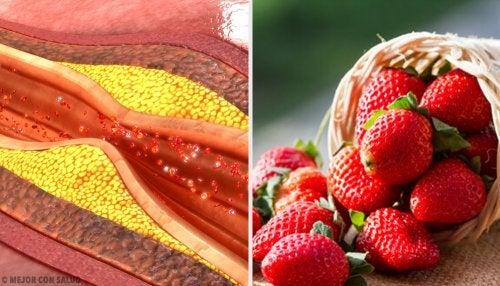 Los el trigliceridos y malo que bajan colesterol alimentos