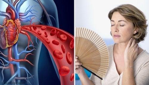 ¿Cómo afecta la menopausia a la salud de tu corazón?