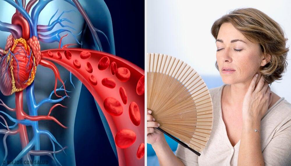 Cómo afecta la menopausia a la salud de tu corazón