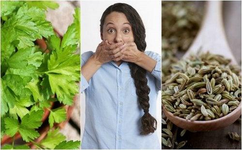 Cómo combatir la halitosis estomacal con 5 remedios de origen natural