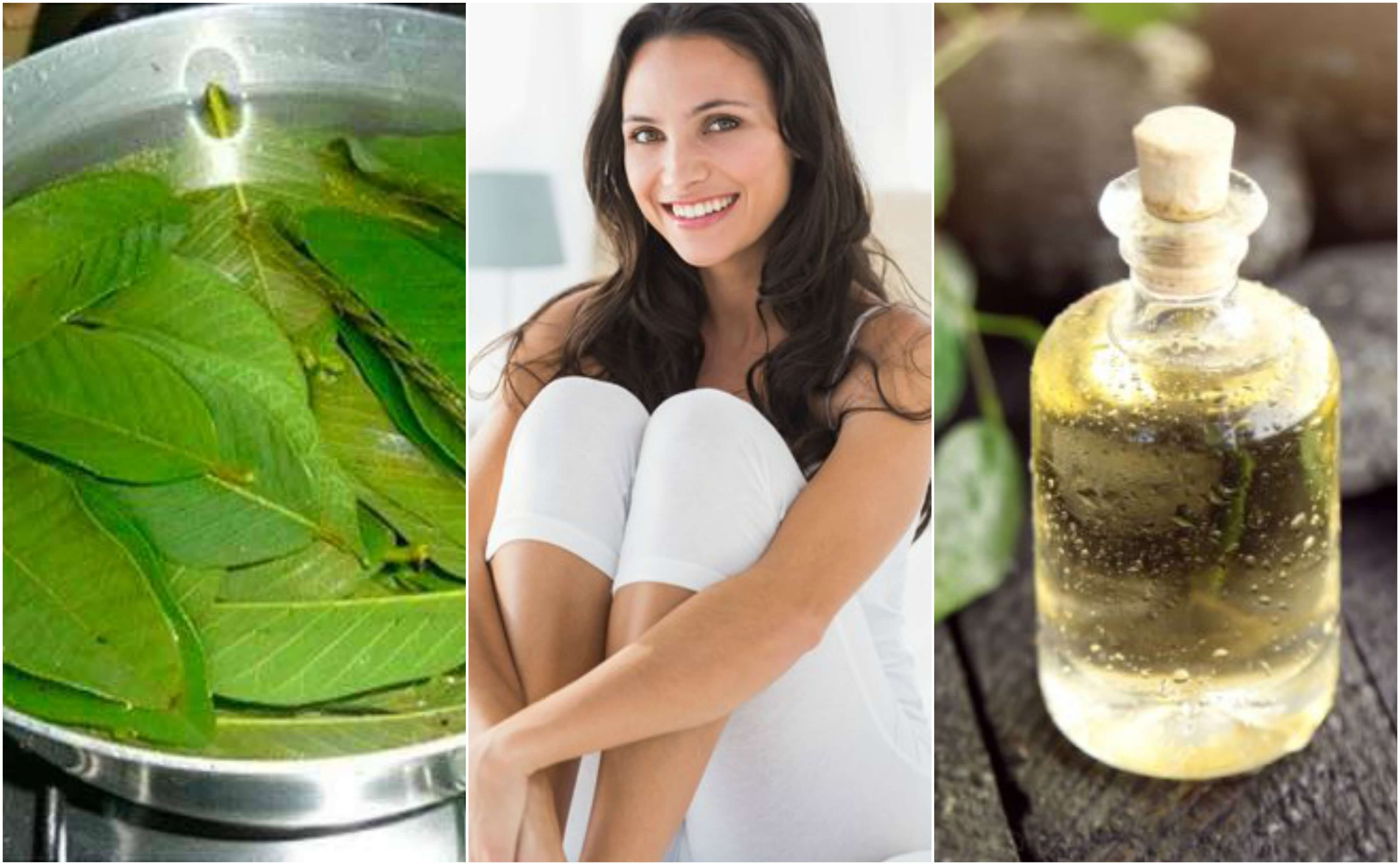 Resultado de imagen para Remedios con hojas de guayabo para el flujo vaginal excesivo