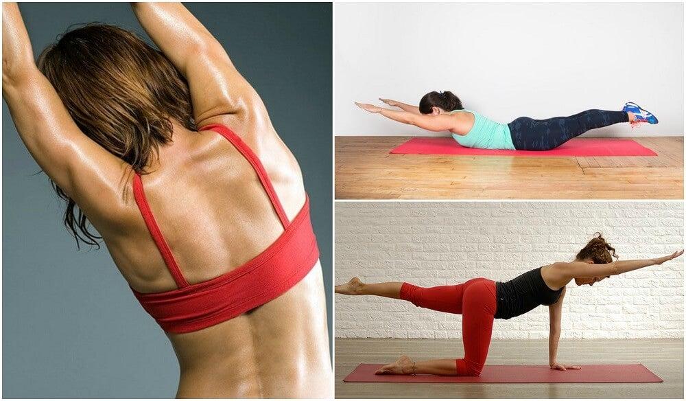 Cómo hacer 5 ejercicios sin pesas para la espalda