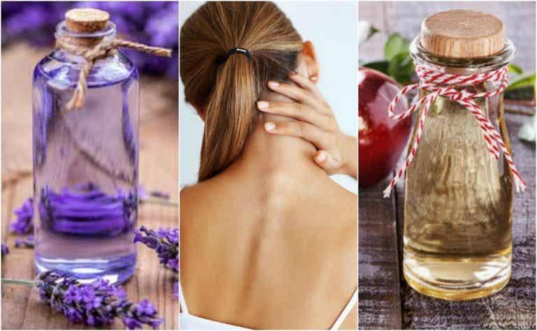 Cómo preparar 5 remedios naturales para aliviar la tortícolis espasmódica