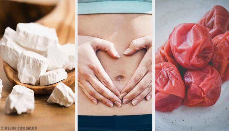 Cómo regenerar la mucosa intestinal con kuzu y umeboshi
