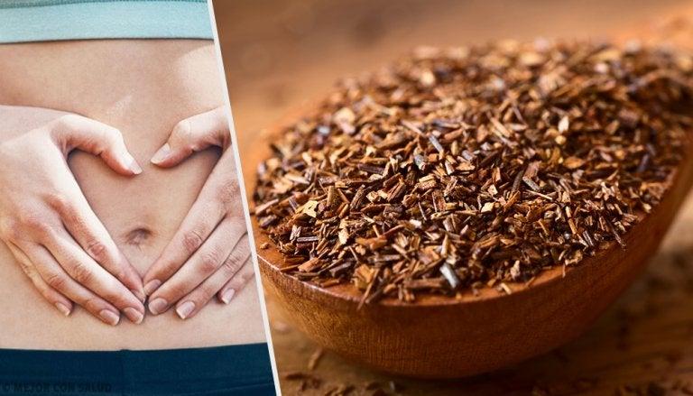 Formas de preparar el té de rooibos para realizar bien la digestión