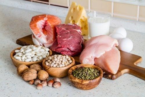 Diferentes tipos de proteína