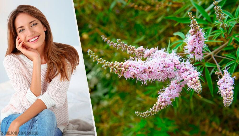El sauzgatillo, un gran remedio natural para las mujeres
