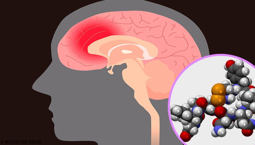 Hormona luteinizante: qué es y cómo actúa