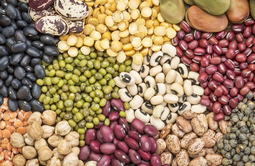 Qué otros nutrientes nos aportan las legumbres