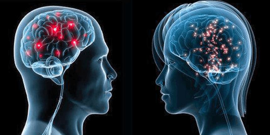 Síntesis y regulación de la hormona luteinizante
