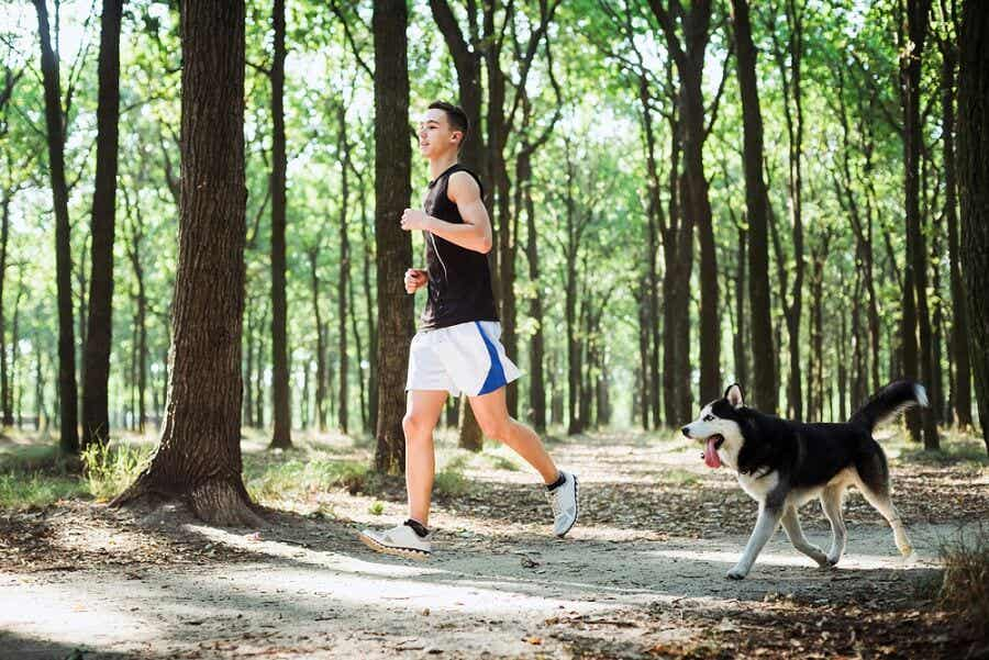 Take your dog for a walk or a run