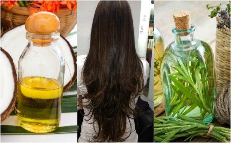Tratamiento casero de aceite de coco y aceite de romero para hacer crecer el cabello
