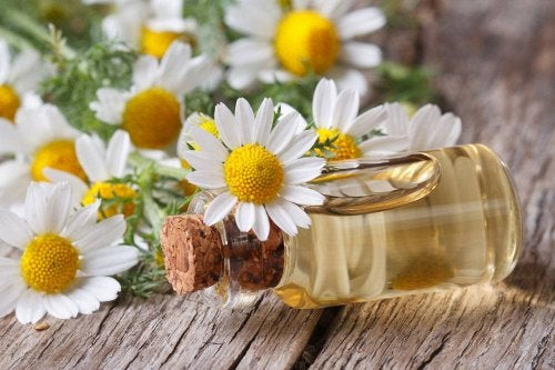 aceite de manzanilla para la alergia de la piel