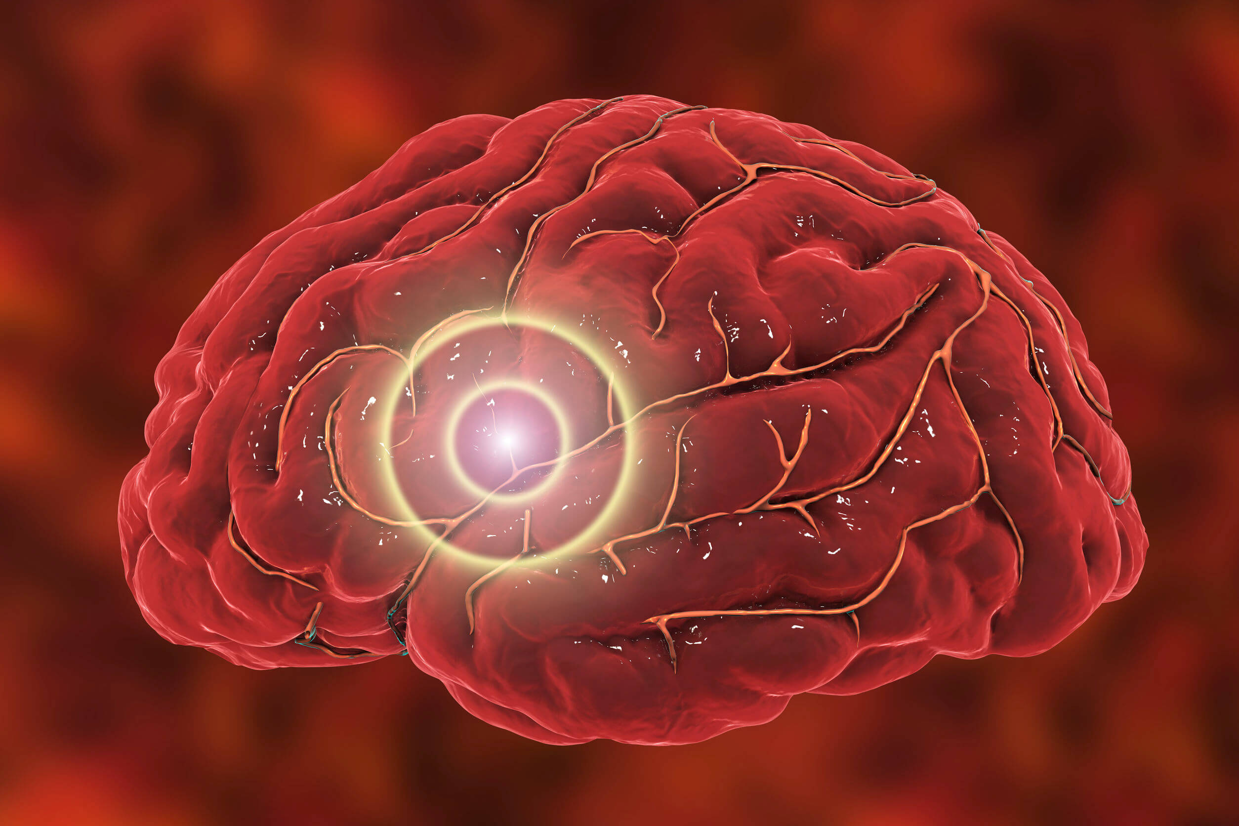 El lorazepam actúa sobre el sistema nervioso.