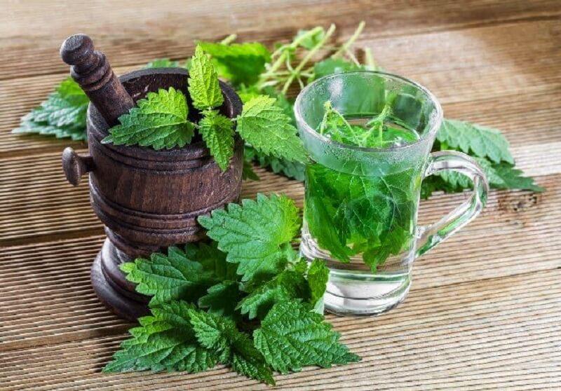 plantas naturales para curar la próstata inflamada