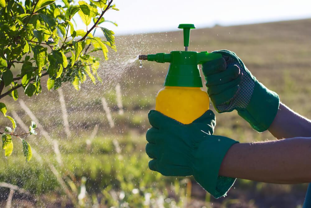 Evita los pesticidas