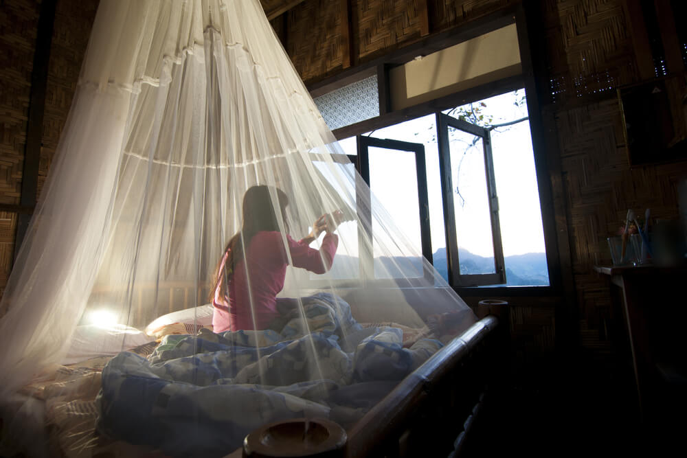 Otras acciones para repeler a los mosquitos