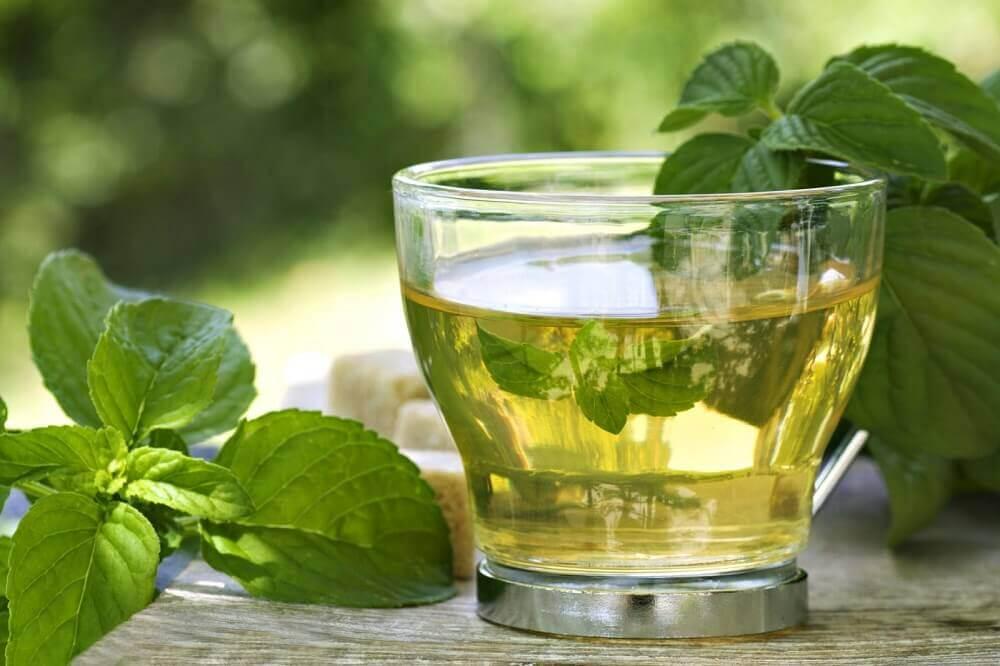 te verde para tratar el hígado inflamado