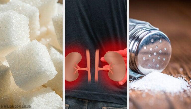 8 tips para mejorar la función de los riñones de manera natural