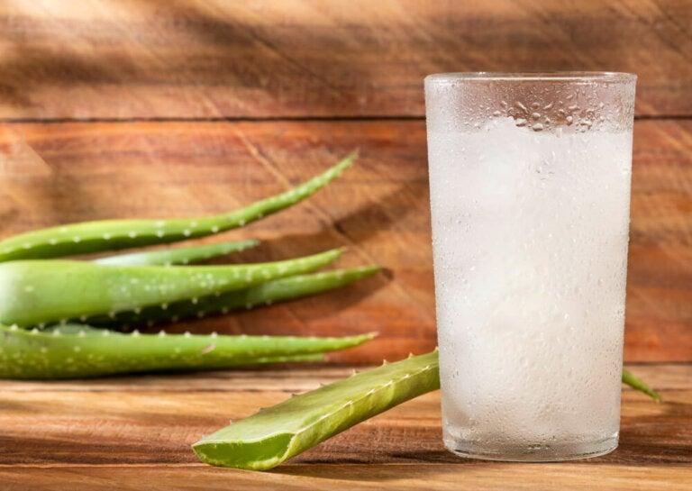 5 razones por las qué deberías tomar aloe vera cuando sufres gastritis