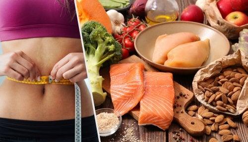 Dieta cetogenica 5 comidas