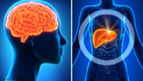 5 diagnósticos extraordinarios de la historia de la medicina