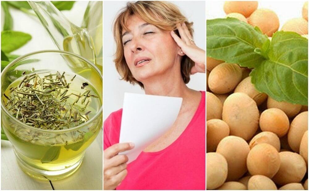5 productos naturales para controlar la menopausia