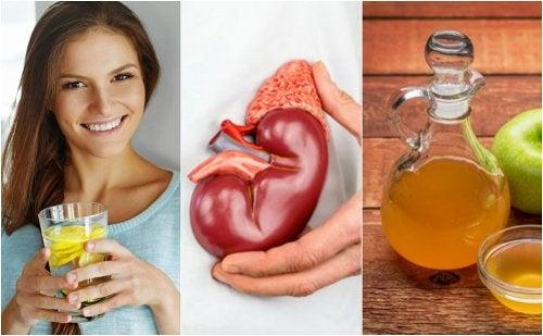 6 consejos para eliminar los cálculos en los riñones