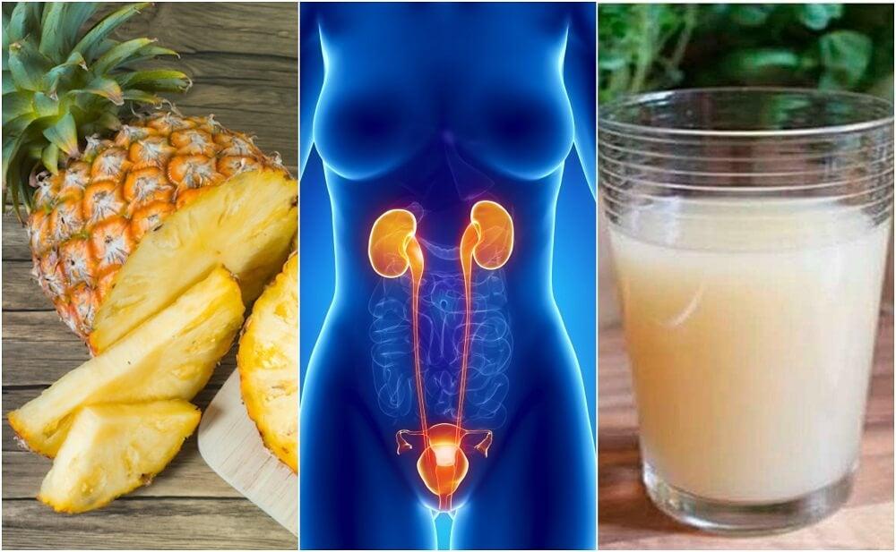 6 remedios para las enfermedades del tracto urinario