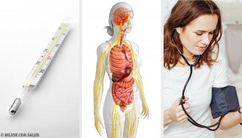 ¿Cómo saber si tienes mercurio en el organismo y qué debes hacer?
