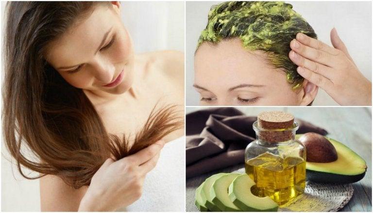 Cómo usar el aguacate para restaurar el cabello dañado