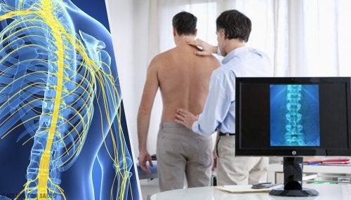 Esclerosis múltiple: una enfermedad polifacética