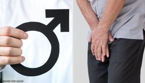 disminución de la erección y eyaculación precoz