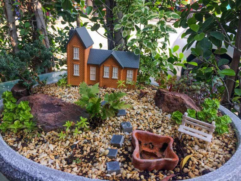 Minijardín, 6 ideas geniales para crearlos