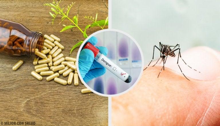 Tratamiento complementario del dengue: remedios naturales