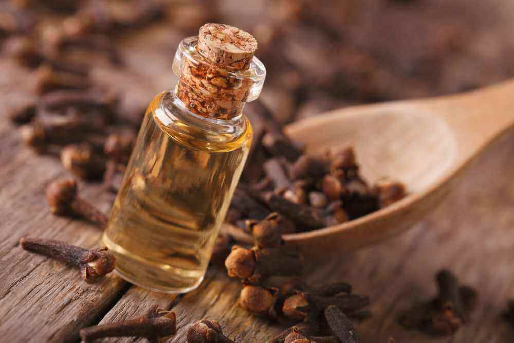 Aceite de oliva y aceite de clavo