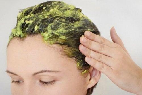 El de aguacate aceite en cabello del beneficio