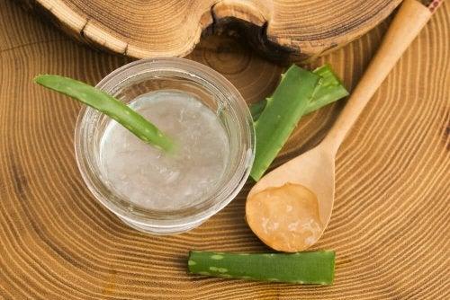 El aloe vera combate las infecciones de la piel