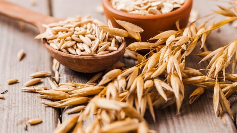 Consume avena para aumentar tu ingesta de carbohidratos buenos