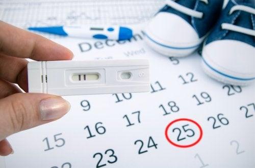 embarazo-ciclo-menstrual